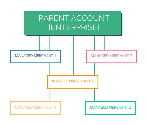 Managed merchant visual (2)