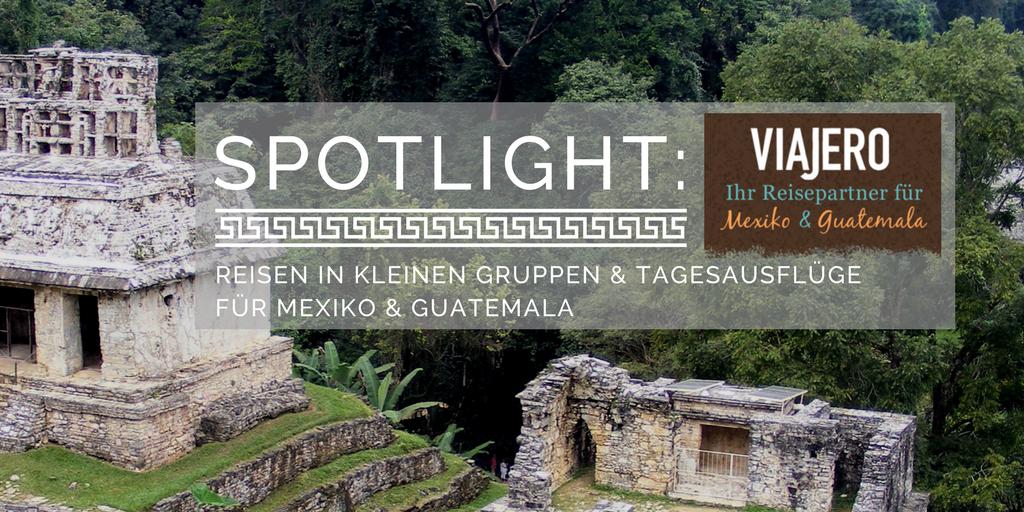 Spotlight Interview mit Viajero Mexico