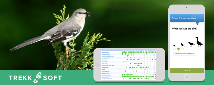 App use during birding and nature tours