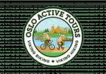 Viking Biking Logo