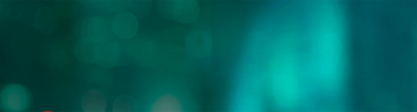 banner-princing-pages-bg-1.png