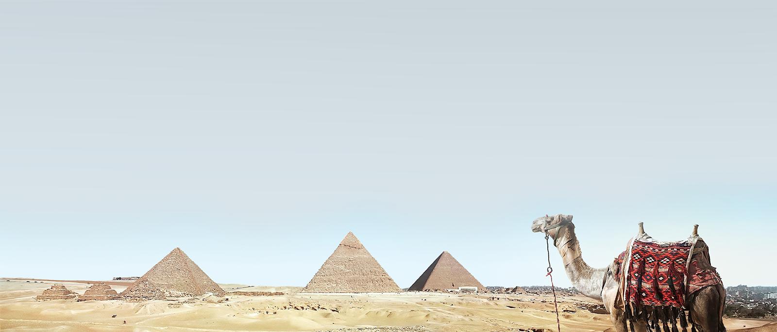 camel-ends