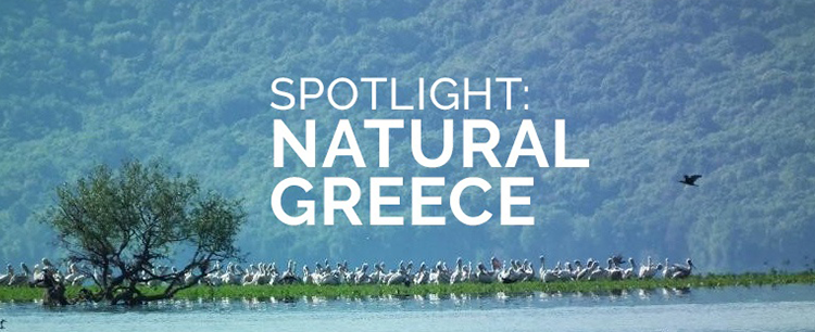 spotlight_natural_greece.png