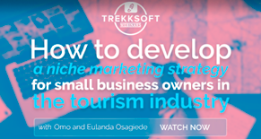 How to develop a niche marketing strategy for small business owners in the tourism industry Image