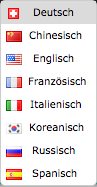 feature website multilingual